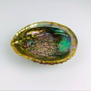 Abalone Shell Mother of Pearl Vintage Lucite Footed Trinket Smudge Jewelry Dish